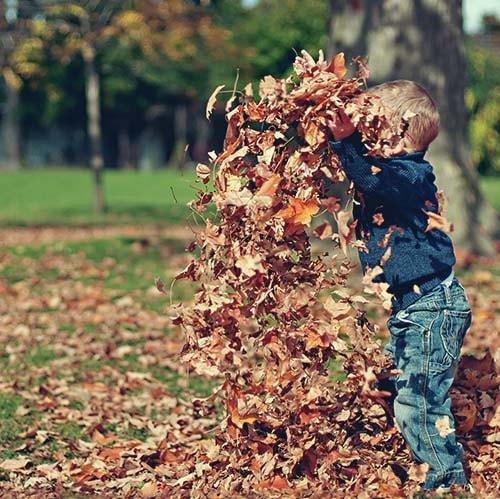 automne-min